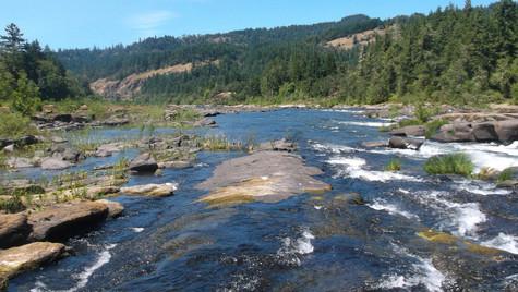 umpqua river horizon.JPG