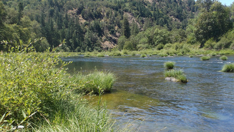 Oregon Mountains and River.JPG