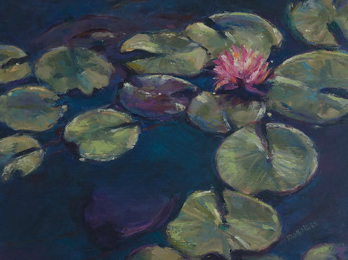 Rosemarie Mendes - Lilly Pads