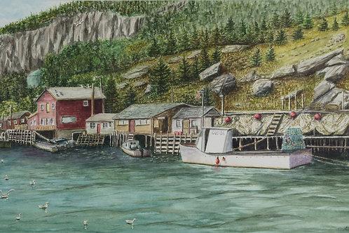 Stu Browning - Quiddi Viddi Harbor, Newfoundland
