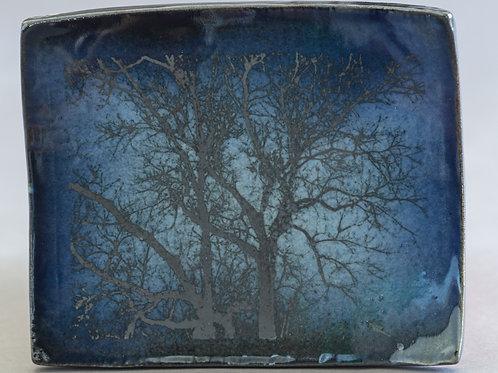 Avis Cherichetti - Butternut Branches
