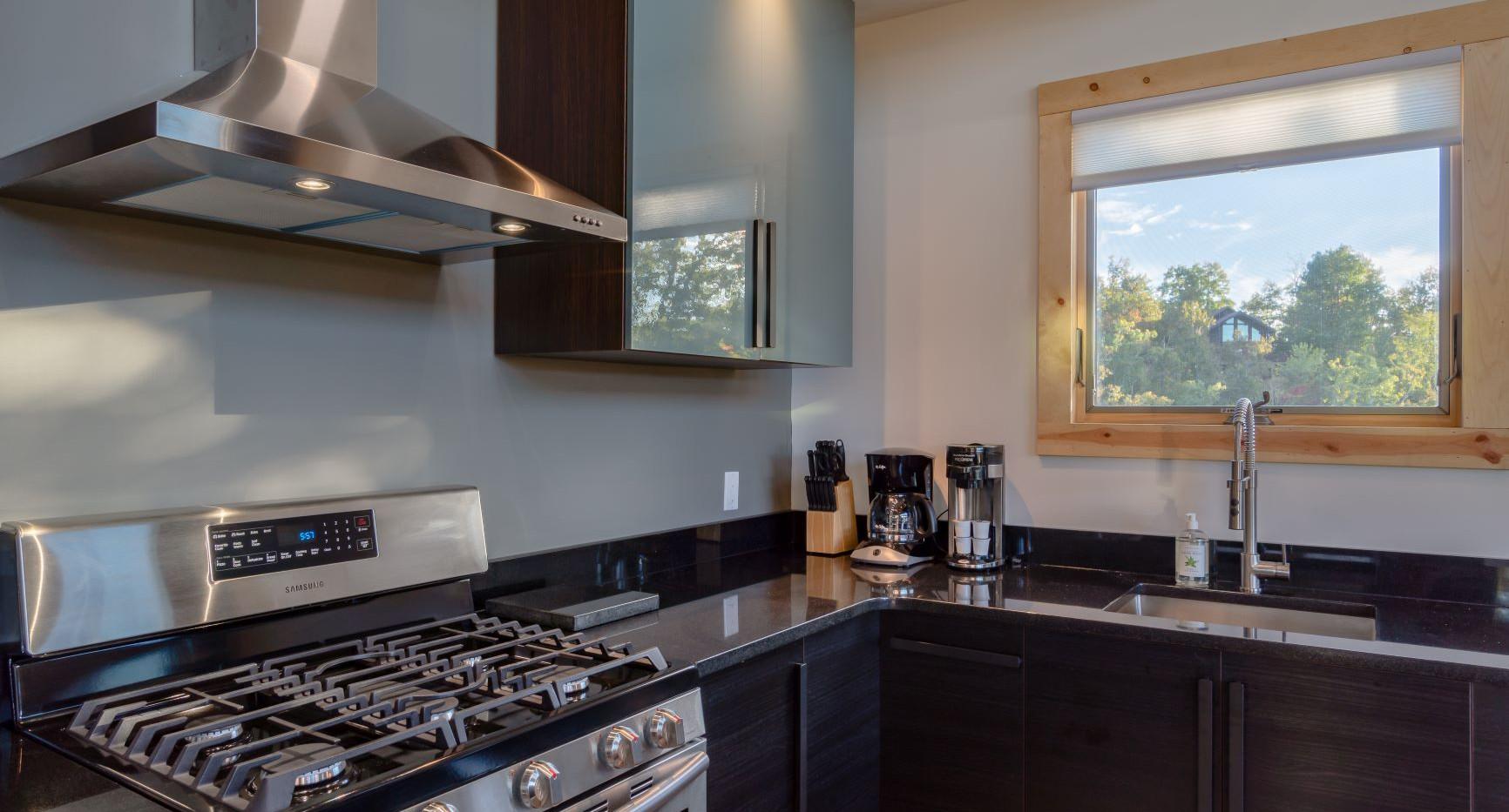 Point D - kitchen view - sm.jpg