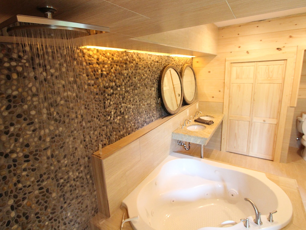 WS3bathroomshower.jpg