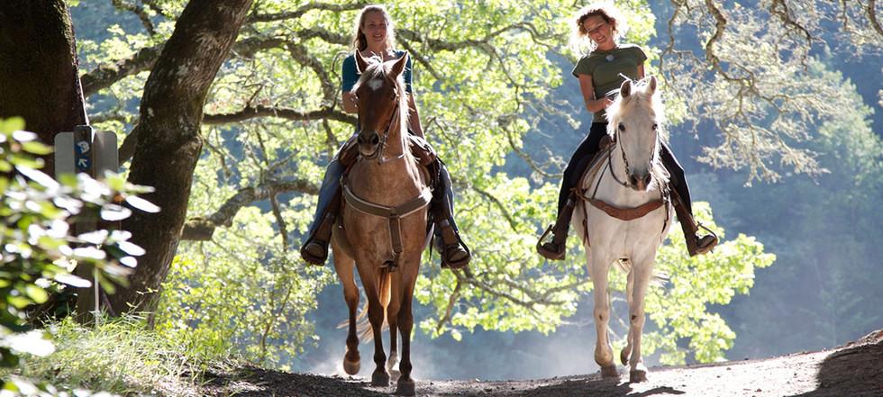 attractions-horseback-riding.jpg