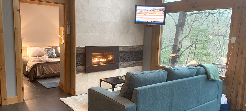 Living Room Fireplace 2.jpg