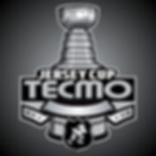 TecmoJerseyCup3.png