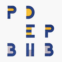 PEDP2 (2013)