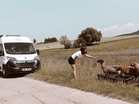 Roadcar R540