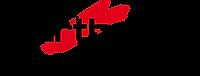 Carthago_Reisemobilbau_GmbH_Logo.svg.png