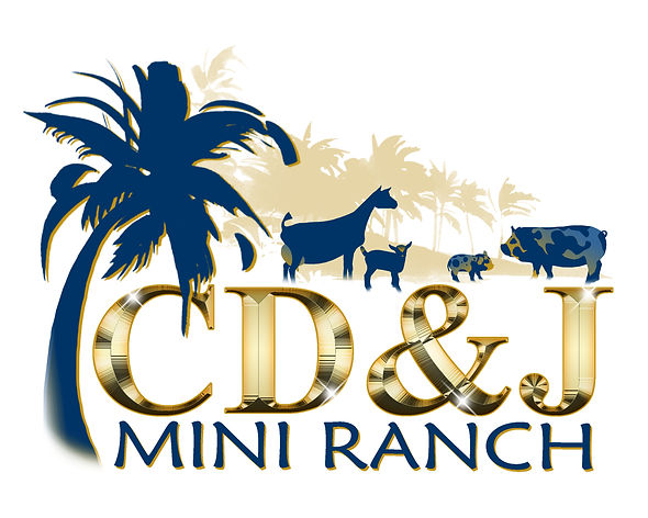 CDJ-MINI-RANCH-LOGO-DESIGN3 (1).jpg