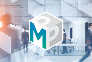 mppbreakout_Break-out copy.jpg