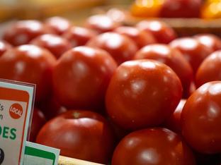 Big Johns Tomatoes_1.png