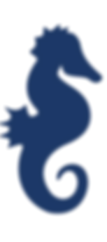 Seahorse Logo.png