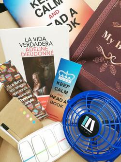 Caja Literaria Enero
