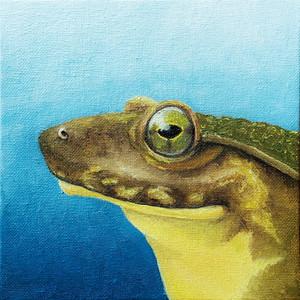 #27 Goliath Frog