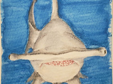 #201 Great Hammerhead Shark