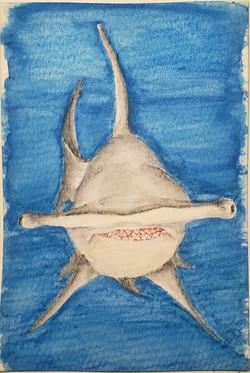 #201 Great Hammerhead Shark