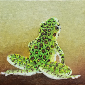 #23 Amami Oshima Frog