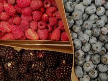 Intermission - Berries!