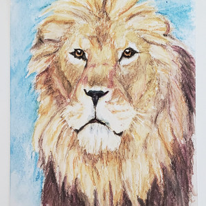 #38 Barbary Lion