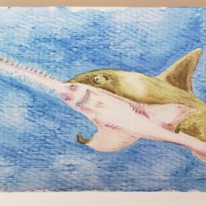 #49 Green Sawfish