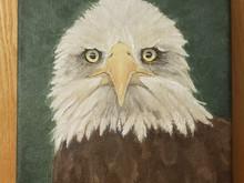 Intermission - Eagle