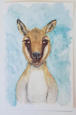 #30 Toolache Wallaby