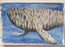 #113 North Atlantic Right Whale