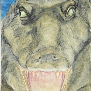 #346 Siamese Crocodile
