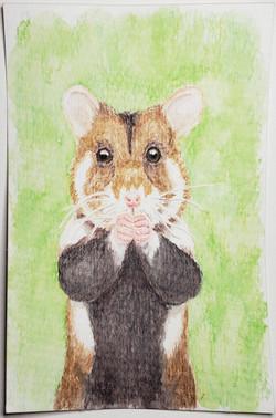 #144 European Hamster
