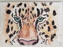 #2 Amur Leopard
