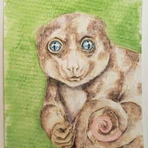#165 Blue-eyed Cuscus