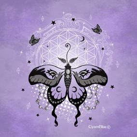 Sticker Moth magic.jpg