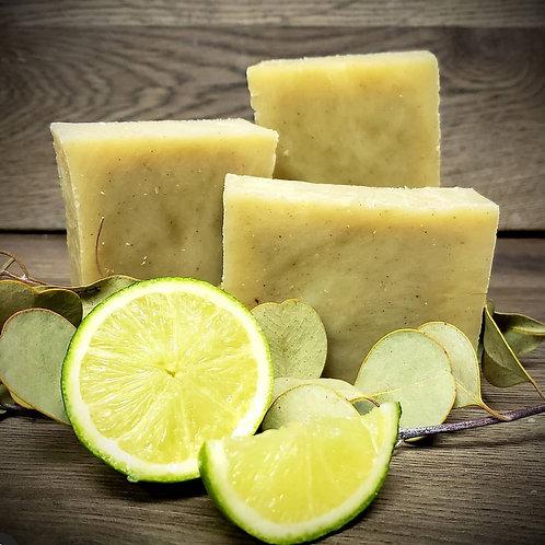Eucalyptus and lime Shampoo bar