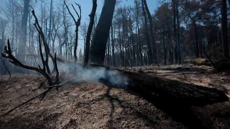 """""""Alerta roja para la humanidad"""" informe de la ONU advierte cambios climáticos irreversibles"""