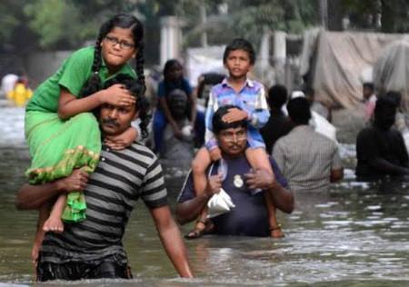 1 millón de afectados por inundaciones, miles de evacuados y animales sin alimentos