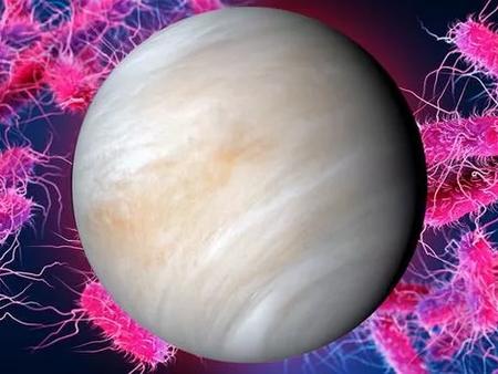 La vida en Venus podría ser completamente distinta a todo lo conocido en la Tierra