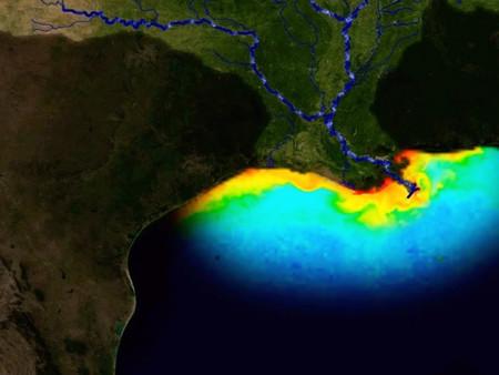 Preocupante expansión de la zona muerta del Golfo de México, vida marina es imposible