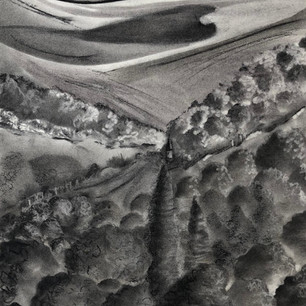 Across to the Downs Charcoal Framed original £115