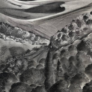 Across to the Downs Charcoal