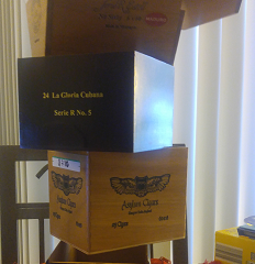 Wk. 36, Book 34: The Box Book Sculpture Challenge