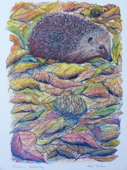 Autumn Hedgehog Open Edition Print