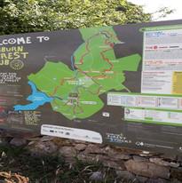 gisburn forest sign v2.jpg