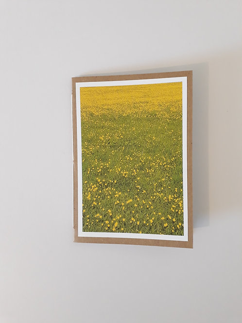 Field Of Buttercups Greeting Card Handmade Visit Hodder Valley