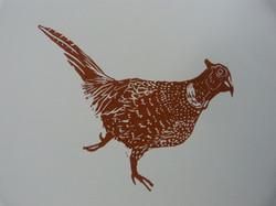 Running Wild Pheasant