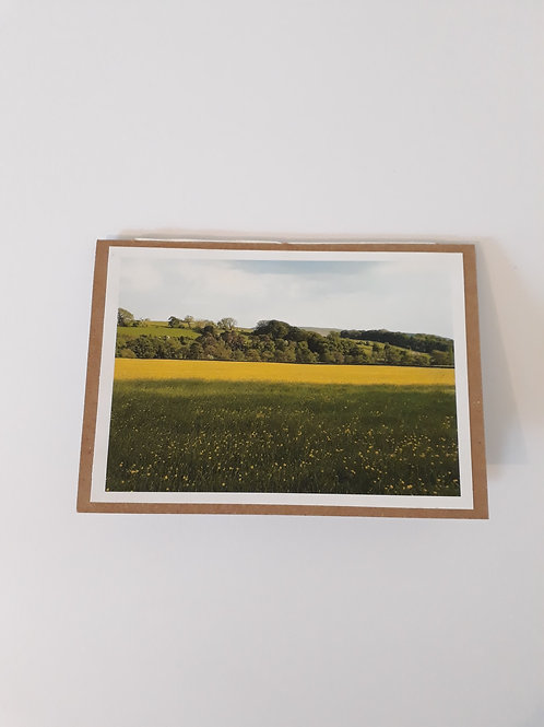 Buttercup Meadow Greeting Card Handmade Visit Hodder Valley