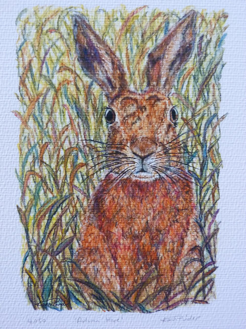 Autumn Hare Signed Limited Edition Print