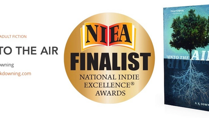 Into the Air is a NIEA Finalist!