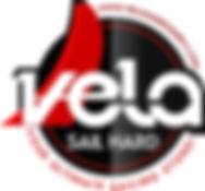 Vela Sailing Logo New - Retouched.jpg