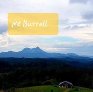 Mt Burrell .jpg